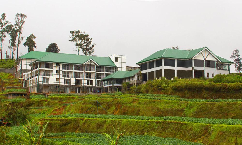 hotel mist