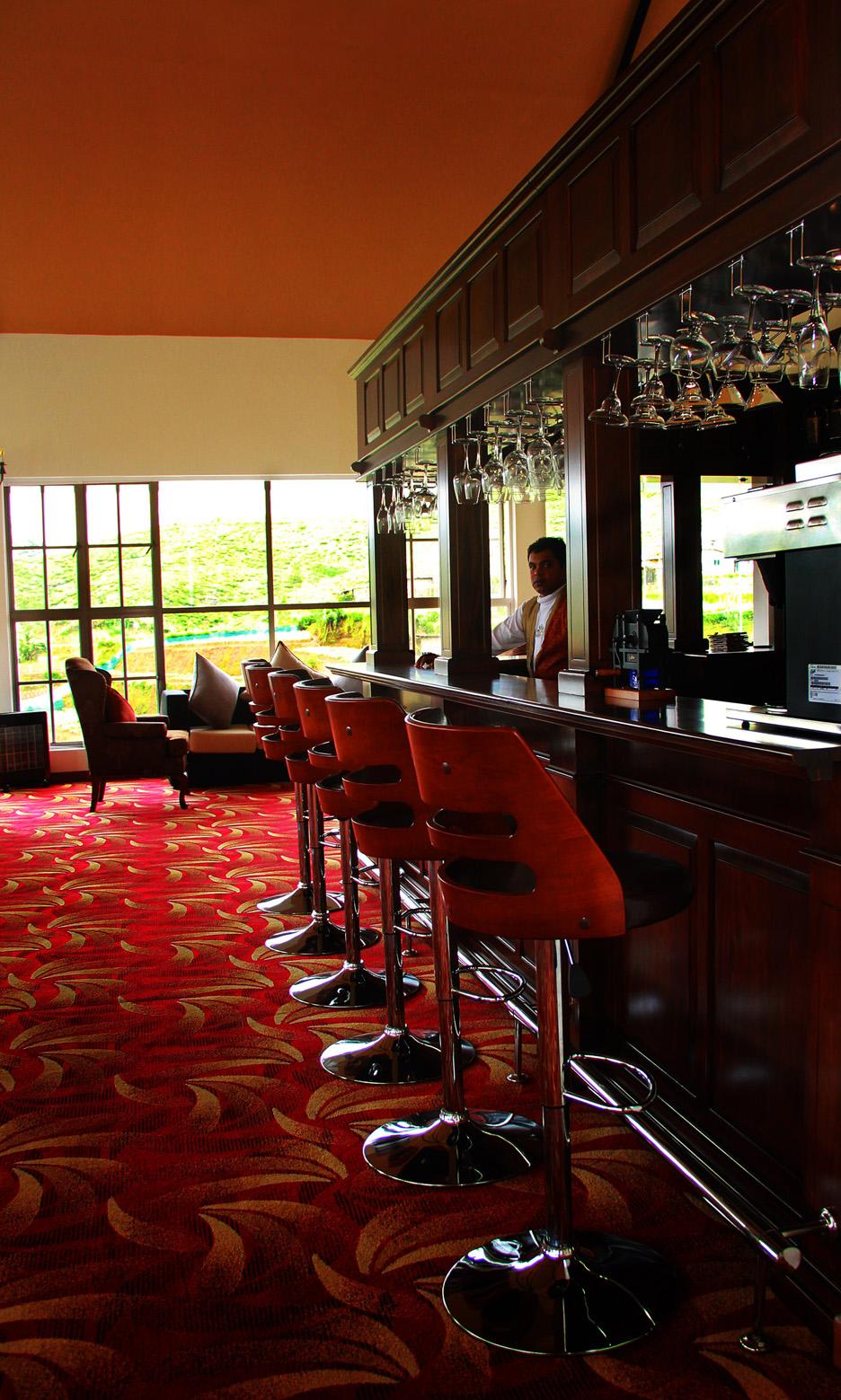 Single Tree Bar Lounge